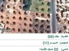 ارض للبيع منطقة بلال حوض الميسر 11