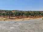 ارض ذات اطلالة بين الفلل في شفا بدران حوض المقرن من المالك بسعر مغري