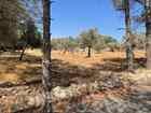 قطع اراضي للبيع في بدر الجديدة بلقرب من دابوق ٥٠٠ متر