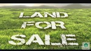 أرض للبيع في أجمل مناطق الرمثا من المالك مباشرة