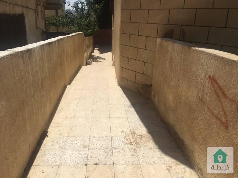 الهاشمي/حي نايفه/مقابل الجنيدي للسجاد والموكيت