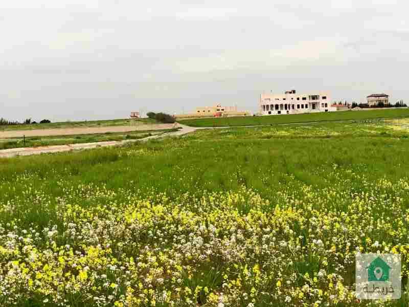 أرض 930 م للبيع في ام رمانة _ جنوب عمان _ من المالك
