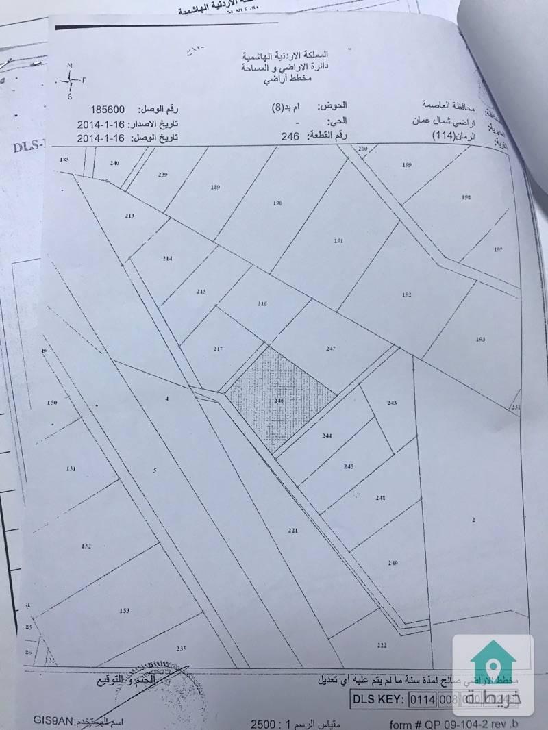 ٦ دونم في تل الرمان اراضي شمال عمان