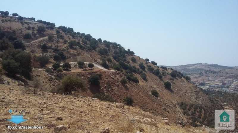 ارض للبيع في وادي السير/ ابو السوس