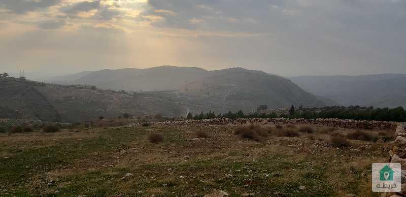 قطعة ارض سكن ريفي بأحكام خاصة في منطقة بدر قرية بلال حي الاميرات بجانب قصر الاميرة رحمة
