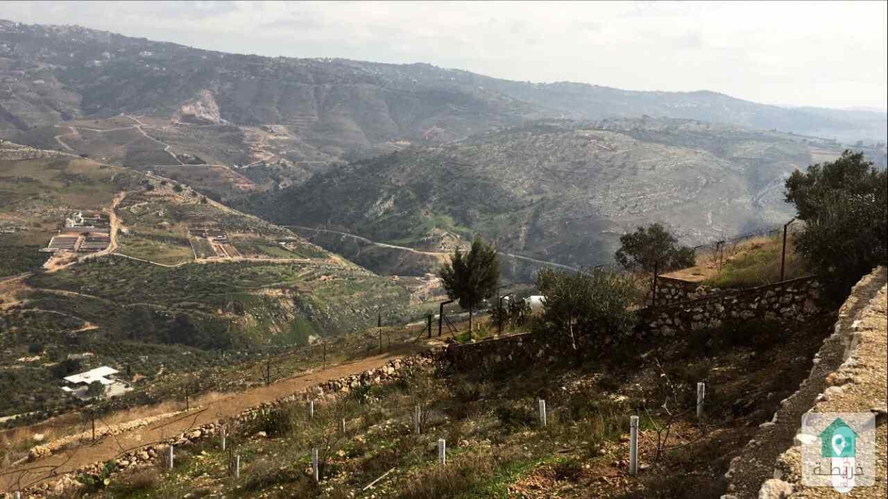 ارض زراعية مع بيت عظم في السلط وادي شعيب)و بيت داخل الصخر
