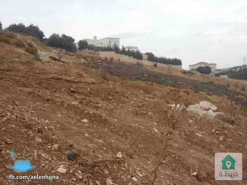 ارض للبيع في دابوق/ ربوة الفردوس - قرب مسجد ربوة الفردوس