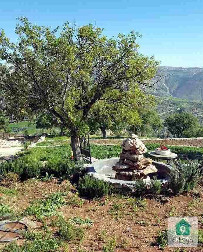 مزرعة في ابو السوس بإطلالة خلابة ومميزة وقريبة من منطقة الفلل