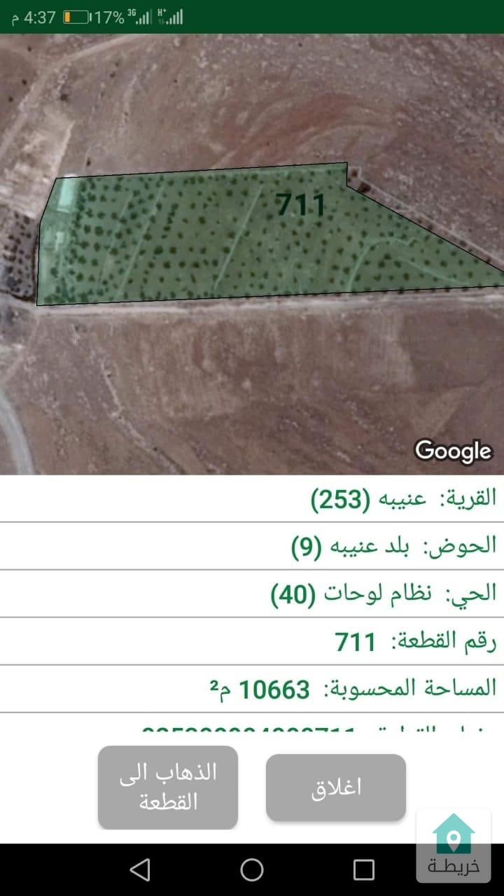 مزرعة للبيع في  جرش  عنيبه الاردن