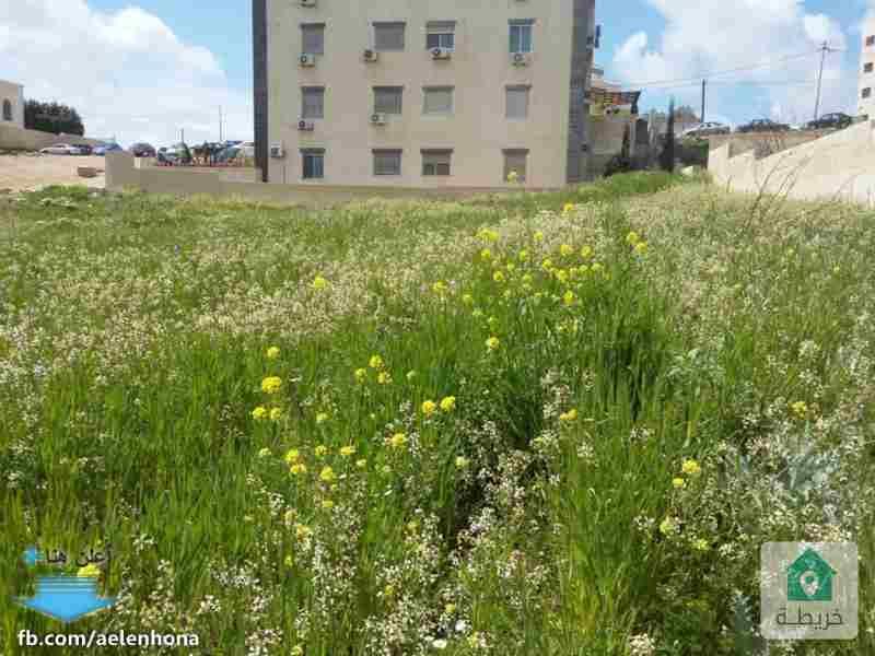ارض للبيع في شفا بدران/ مرج الاجرب - قرب مؤسسة الغذاء و الدواء