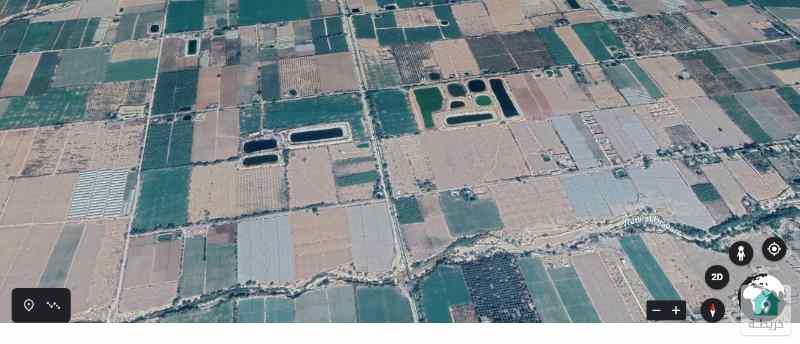 قطعة أرض زراعية في غور الرامة (1227)