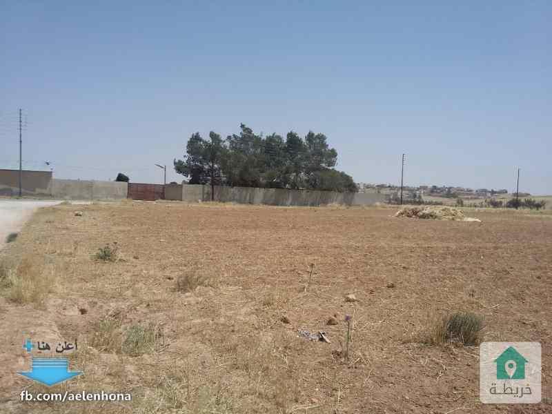 ارض للبيع في الموقر/ ذهيبة الشرقية - قرب تقاطع طريق رجم الشامي ذهيبة مع شارع المية