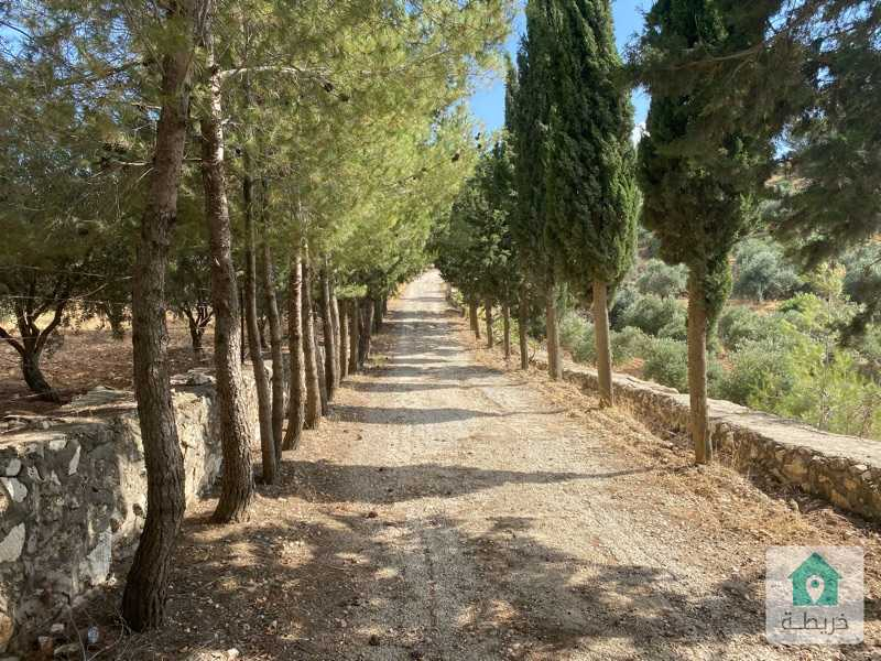 A special piece of land for sale  Amman - Naour