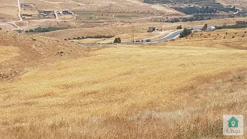 ارض مزرعة في صروت