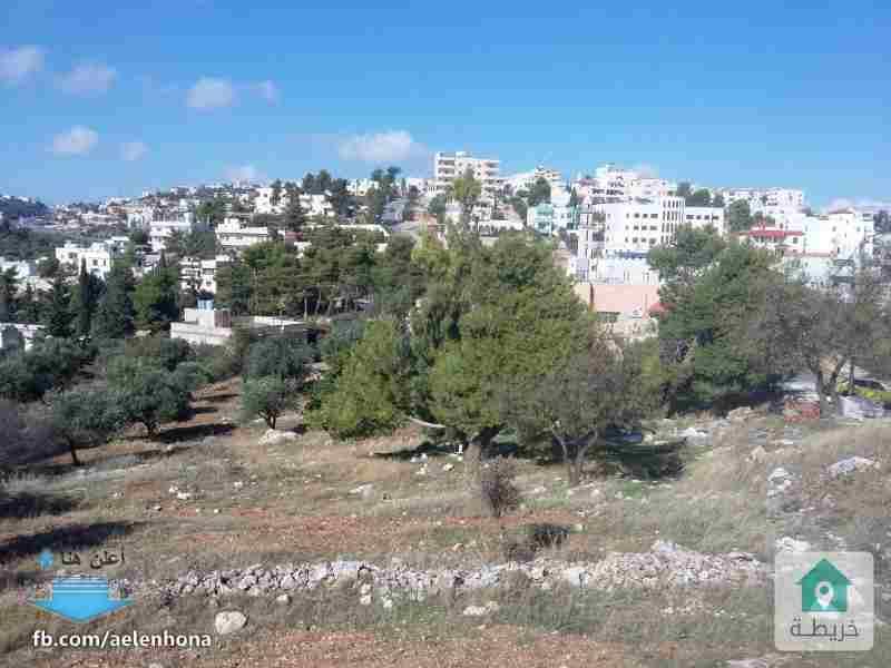 اراضي للبيع في السلط/ اسكان الفردوس - قرب مسجد الفردوس