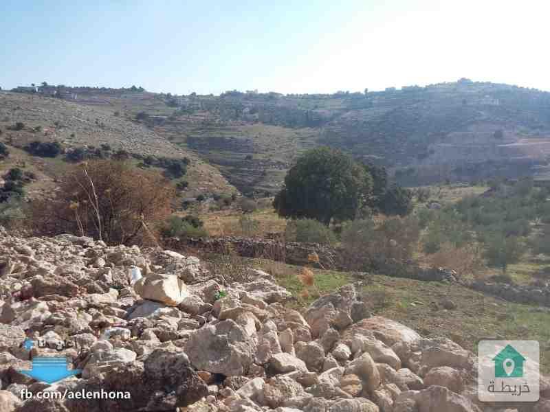 ارض للبيع في السلط/ وادي حادي