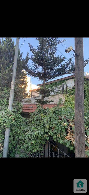 الياسمين منزل طابقين ومخزن مرخص صالون