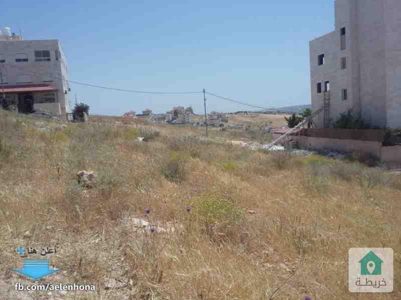 ارض للبيع في شفا بدران/ عيون الذيب قرب مسجد صرفند العمار