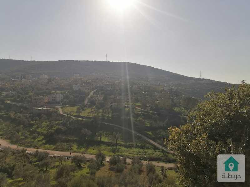 أرض مزرعية في عجلون