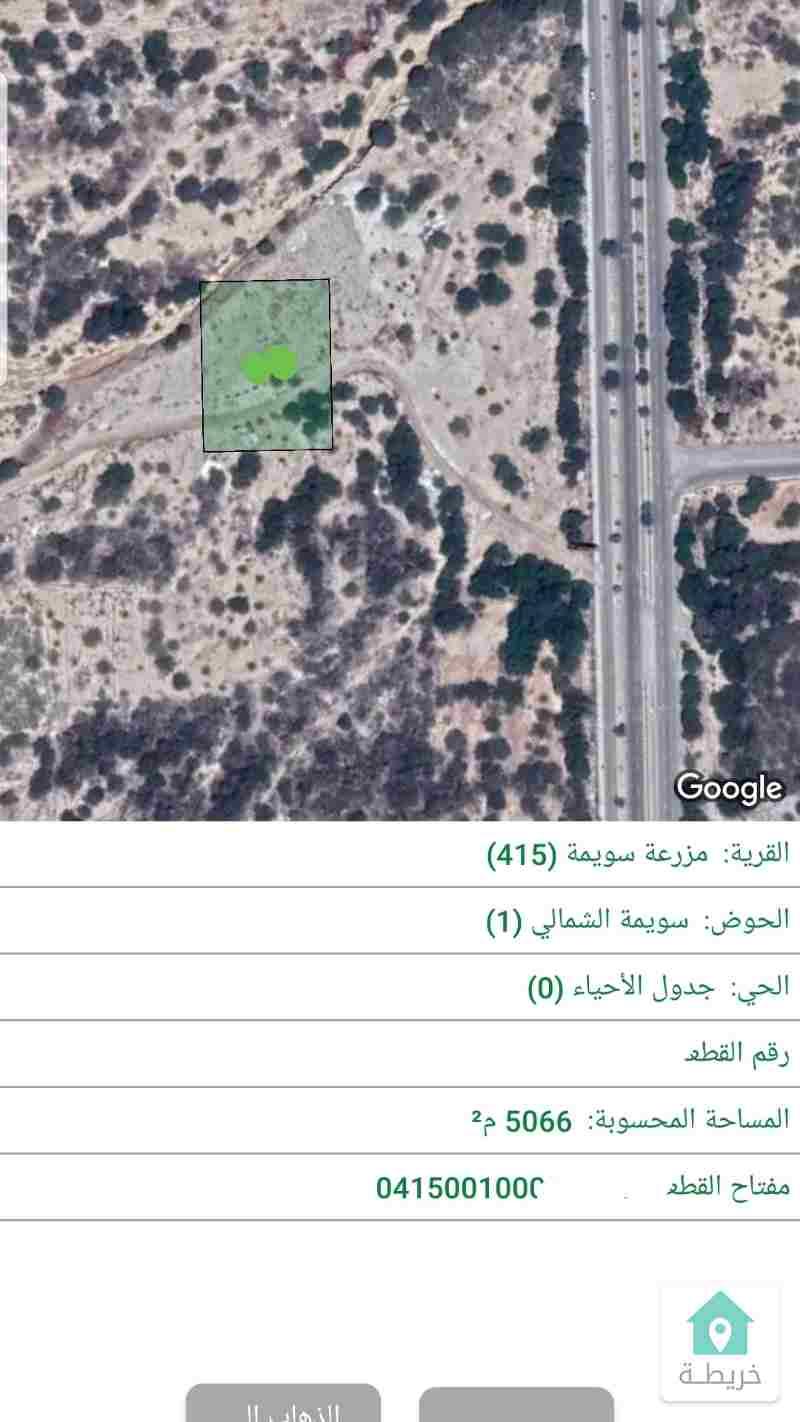 البحر الميت سويمه ارض سياحى 5066م