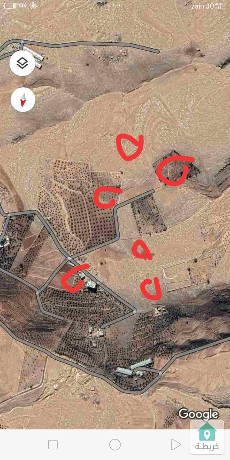 4دونم للبيع عراق الامير مزروعات