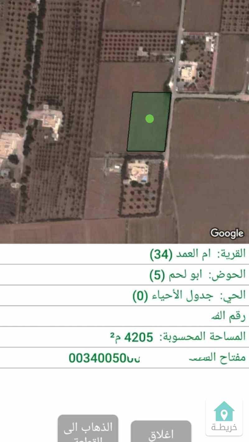 ام العمد ابولحم ارض 4205م