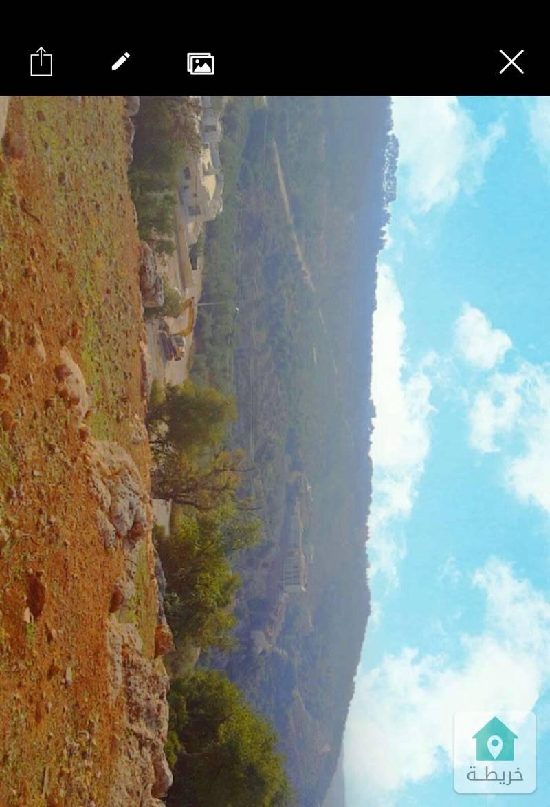 ارض مطله على جبال فلسطين وقصر الامير حسين ميرزا