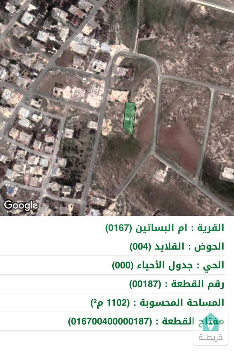ارض للبيع من المالك مباشرة حوض القلايد خلف جامعة الزيتونة.