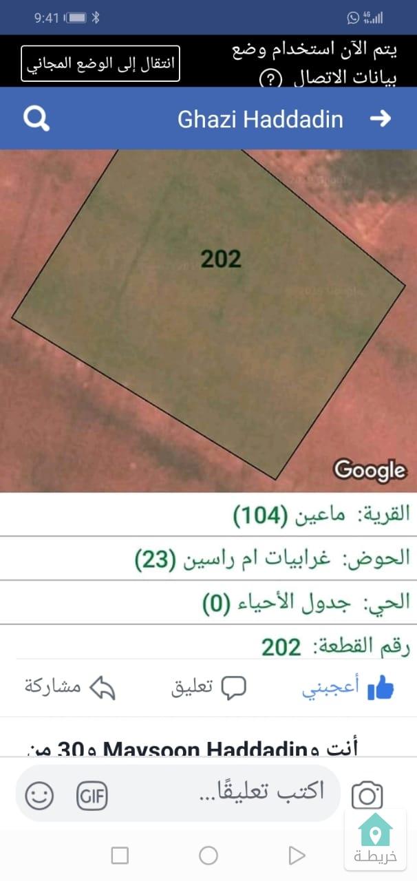 مادبا اراضي ماعين حوض غرابياراسين  رقم القطعه 202